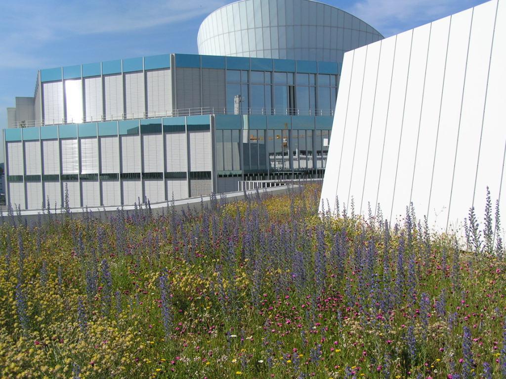 BMW AG. Forschungs- und Innovationszentrum FIZ in München, Dachbegrünung. Planung / Foto: Heiner Luz