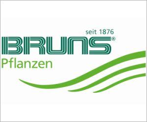 Bruns - Bayern